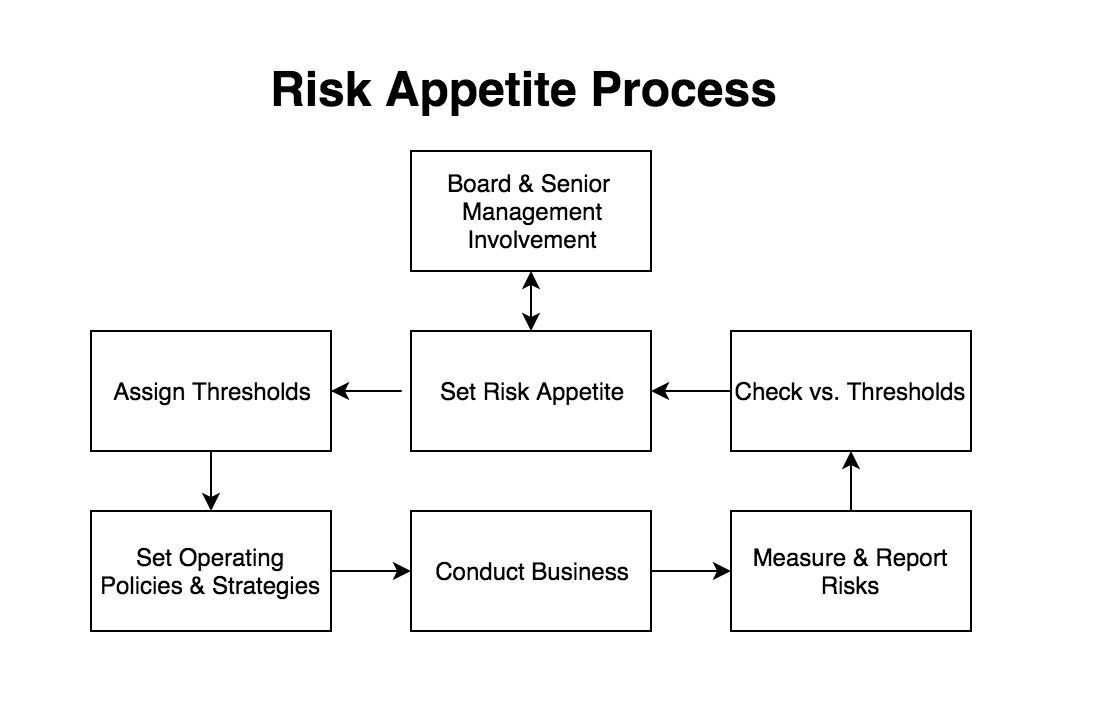 Risk appetite process